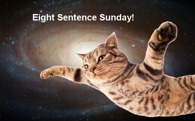 Eight Sentence Sunday, February 15   Ed Hoornaert (Mr