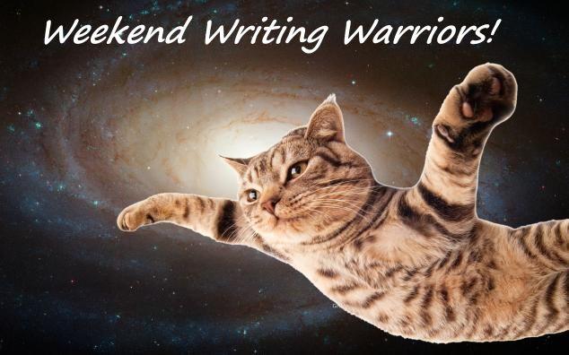 Space cat-wewriwa